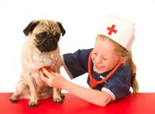 pug health
